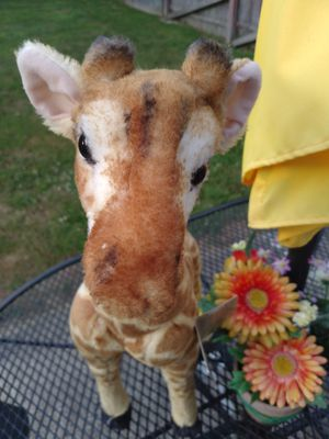 Plush 25 inch giraffe for Sale in Ashtabula, OH