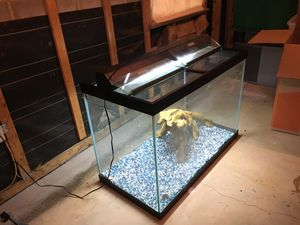 65 gallon fish tank + stand + accessories + fish for Sale in Vienna, VA