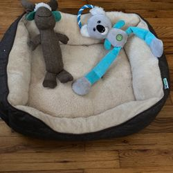 Dog Bed for Sale in Waco,  TX