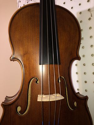 Viola 16 Rumania for Sale in Gaithersburg, MD