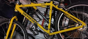 Cannondale for Sale in Lakewood, CO
