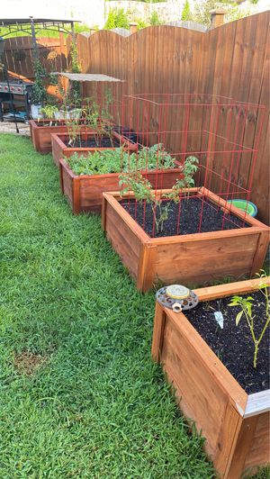 Raised beds for Sale in Chapin, SC