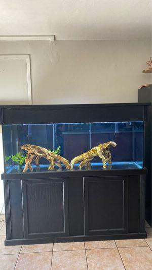 120 Gallon Aquarium for Sale in Ontario, CA