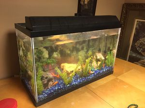 Nice Fish Tank for Sale in Dearborn, MI