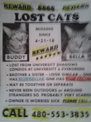 Lost - Please Help - Free Reward! for Sale in US