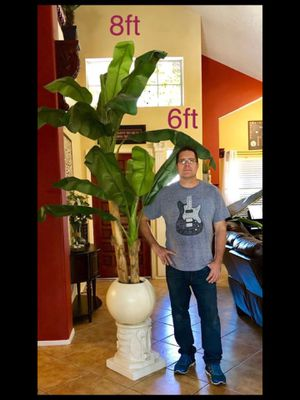 Silk faux banana tree for Sale in Avondale, AZ
