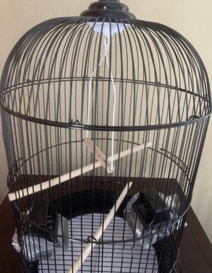 Black Bird Cage - Md (New!) for Sale in Las Vegas, NV