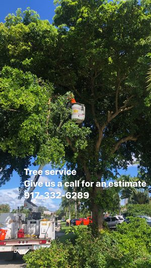 🌳 for Sale in Hollywood, FL
