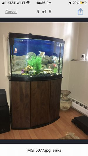 Fish Tank 36 gallons for Sale in Bristol, CT