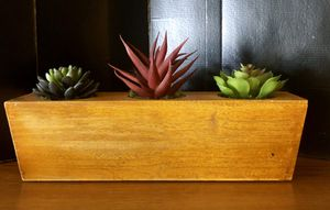 """Wooden box of succulents (fake) 14"""" x 3"""" for Sale in Phoenix, AZ"""