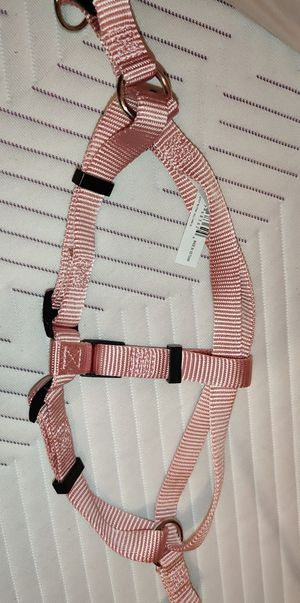 Rose gold dog harness for Sale in San Diego, CA