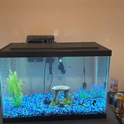 20 Gallon Fish Tanks With All Accessories And Little Friends for Sale in Brandon,  FL