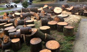 Firewood WOOD Rounds - You Haul for Sale in Federal Way, WA