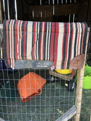 Professionals Choice saddle pad for Sale in Brentwood, CA