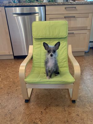 Children's IKEA Poang chair for Sale in Hillsboro, OR