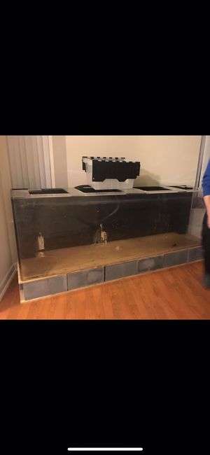 300 Gallon fish tank for Sale in Manassas, VA