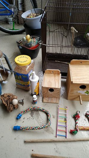 All for $20 parakeet/bird food , cage,toys,accessories, nesting boxes, swing etc for Sale in Dallas, TX