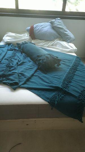 Beautiful blue screen accent throw blanket for Sale in Alexandria, VA