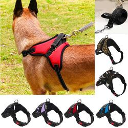 Dog Harnesses for Sale in Brooklyn,  NY