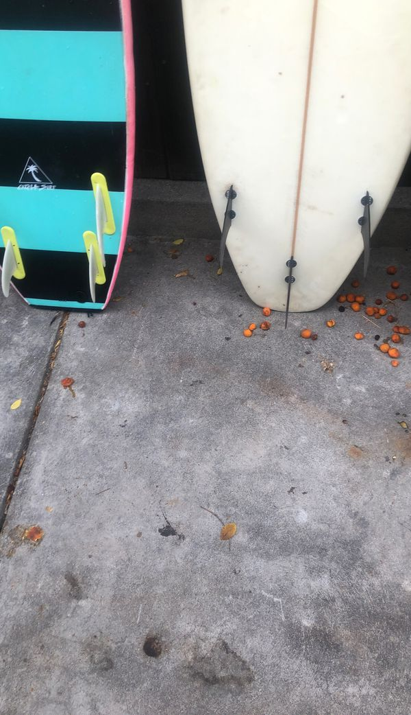 Surfboards catch surf, owl Chapman