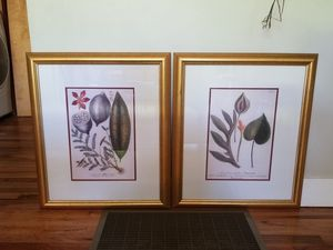 Botanical art set of 2 for Sale in Boise, ID