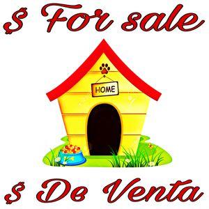 Dog house/ casa de peritos for Sale in Houston, TX