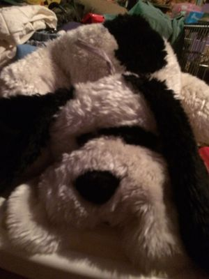 2 large stuffed dogs animals $10.00 each for Sale in Glendale, AZ