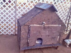 Dog house, Cat? for Sale in Phoenix, AZ