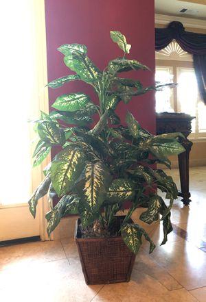 Fake plant Deco for Sale in Manteca, CA