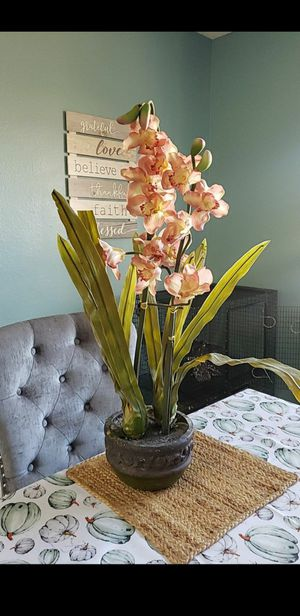 ORCHIDS for Sale in Fontana, CA