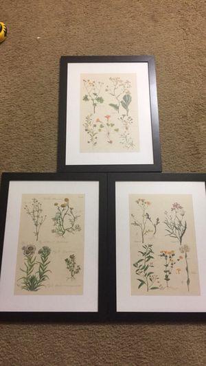 13x17 flower photo for Sale in Fairfax, VA