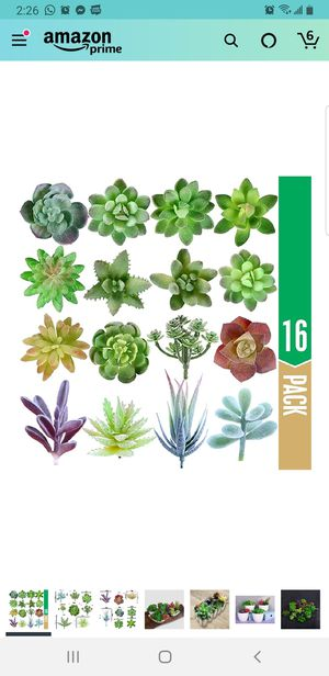 Brand new fake succulent plants for Sale in Revere, MA