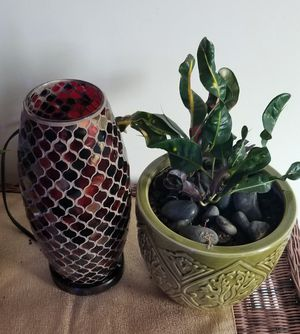 Kirkland's Lamp and Live Plant with Planter for Sale in Franklin, TN