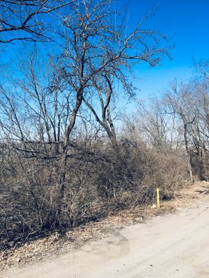 Vacant lot 1/3 acre blue summit MO for Sale in Sugar Creek, MO