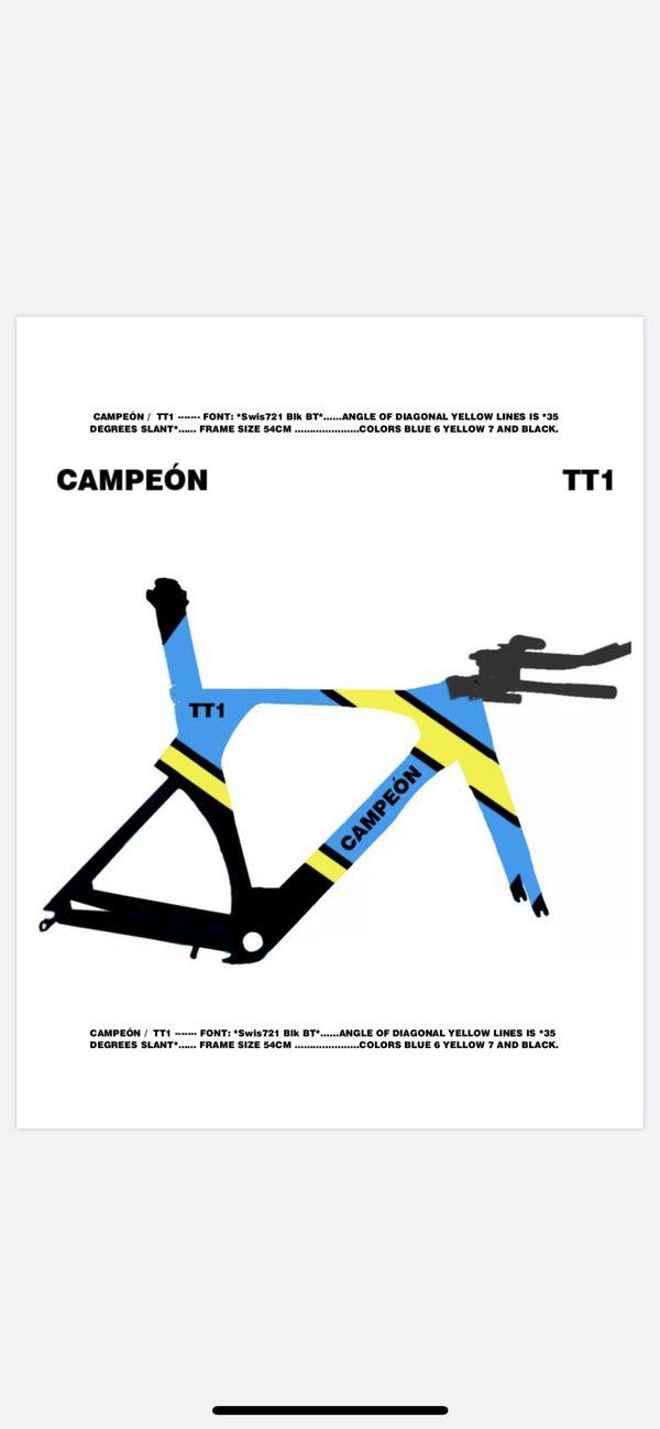 TT bike time trial bike bicicleta Campeón custom paint job