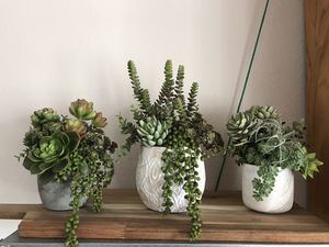 Fake succulents / custom/ plant decor for Sale in San Diego, CA