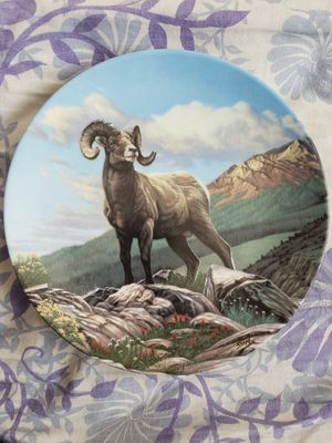 The Big Horn Sheep Wild And Free Dominion Plate for Sale in Aurora, IL