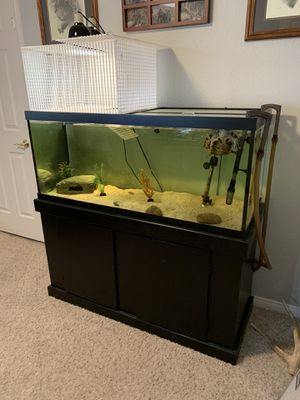 Aquarium and Stand 75 Gallon for Sale in Henderson, NV