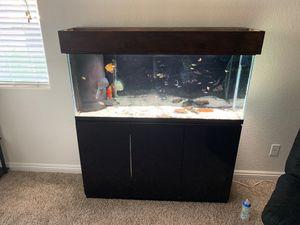 Aquarium or fish tank complete setup with 6 discus for Sale in Las Vegas, NV