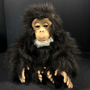 Cuddle Chimp for Sale in Fort Worth, TX