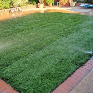 Sod and Seed for Sale in Downey, CA