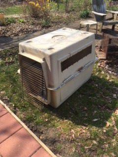 XL dog crate for Sale in Verona, PA