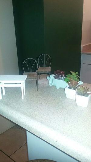 Decor / Succulents for Sale in Riverside, CA