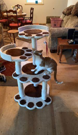 "Cat tree ≈38"" BRAND NEW for Sale in Magnolia, NJ"