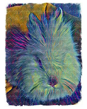 Bunny Rabbit Abstract 8x10 Art Print for Sale in Hesperia, CA