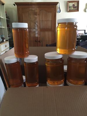Organic bee honey for Sale in Los Angeles, CA