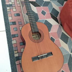Gremlin Acoustic Guitar for Sale in Hollywood, FL