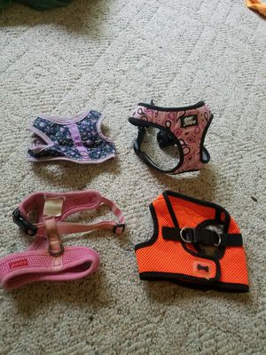 Four extra small dog harnesses for sale for Sale in Georgetown Township, MI