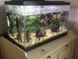 10 Gal. Fish tank for Sale in Garrison, MD
