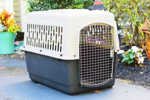 Pet Mate Vari Dog Kennel For Pets New Condition for Sale in Pelham, NH